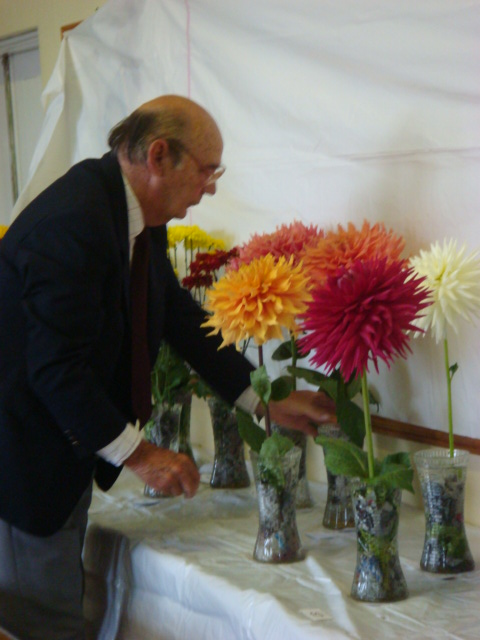 mr-wilkins-judging-the-dahlias.jpg