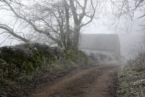 Fog at the top of Back Lane.