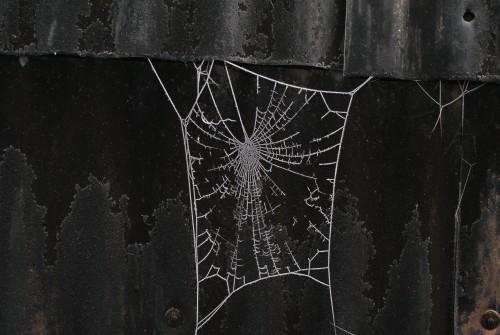 Parwich frost