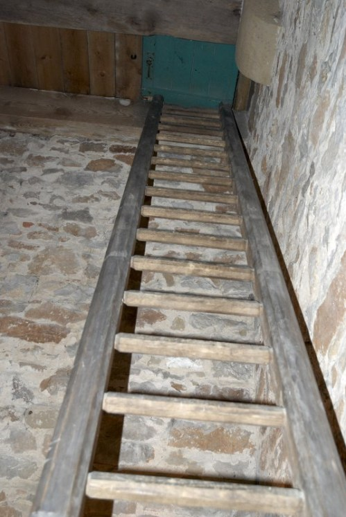 The Ladder Between The Lower and Upper Platforms