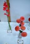 Parwich Flower & Vegetable Show 2013