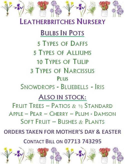 Leatherbritches spring 2014