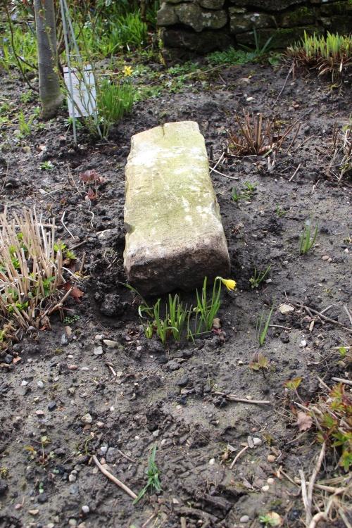 "2.c.4 ""Nature uproots stone"""