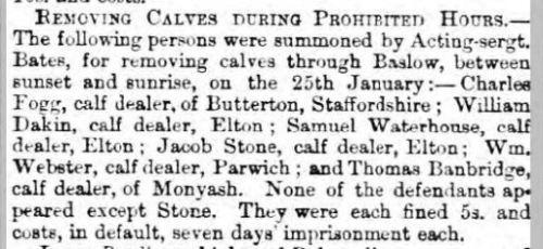 1867 4 Feb Sheff Indep Wm Wbster moving calves