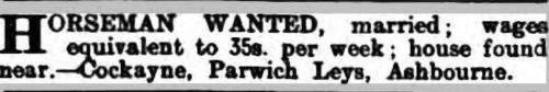 1917 28 Apr DA&J horseman wanted