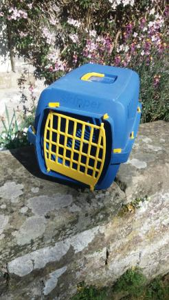 Cat carrier 2