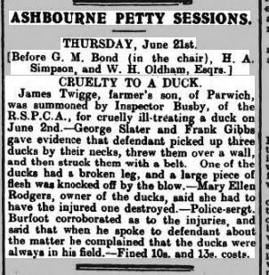 1917 22 Jun Derbys Ad Twigge duck