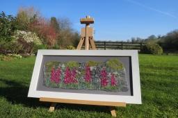 Foxgloves at Bradbourne - Lynn Comley