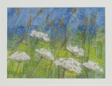Summer Hedgerow - Lynn Comley